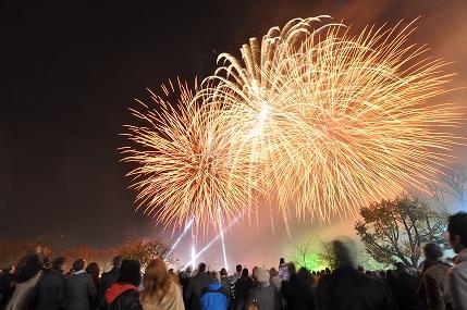 05 Kasım kutlamaları, Battersea Park Havaifişek Gösterileri