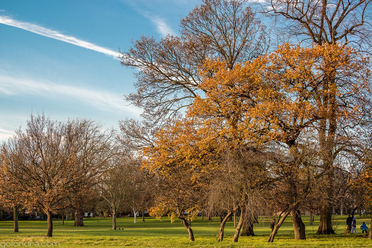 Londra İkliminin Çalışma ve Eğitim Üzerindeki Etkisi