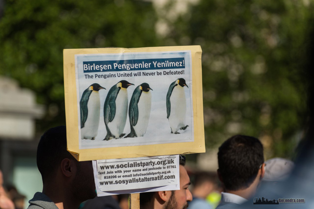 Ingiltere-Londra Protestolari - Occupygezi - Trafalgar Square (19)