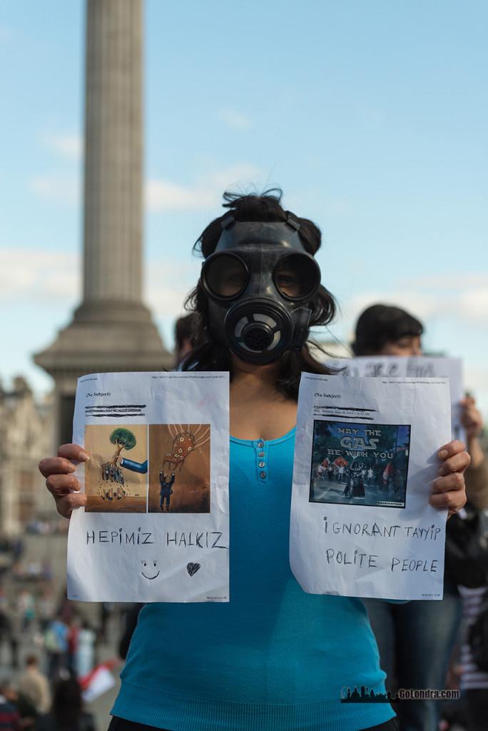 Ingiltere-Londra Protestolari - Occupygezi - Trafalgar Square (26)