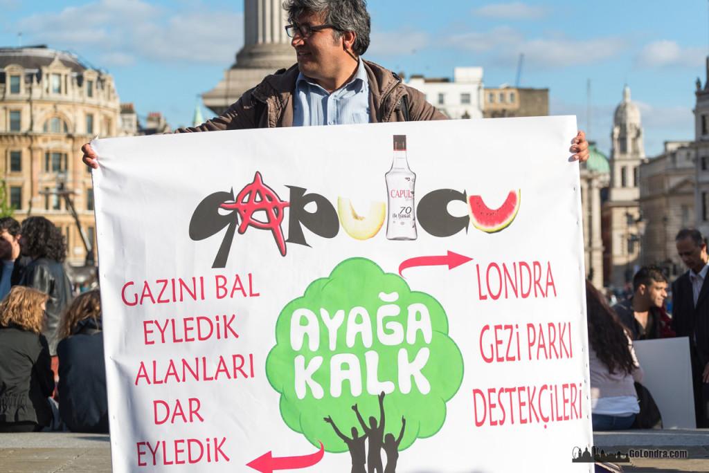 Ingiltere-Londra Protestolari - Occupygezi - Trafalgar Square (27)