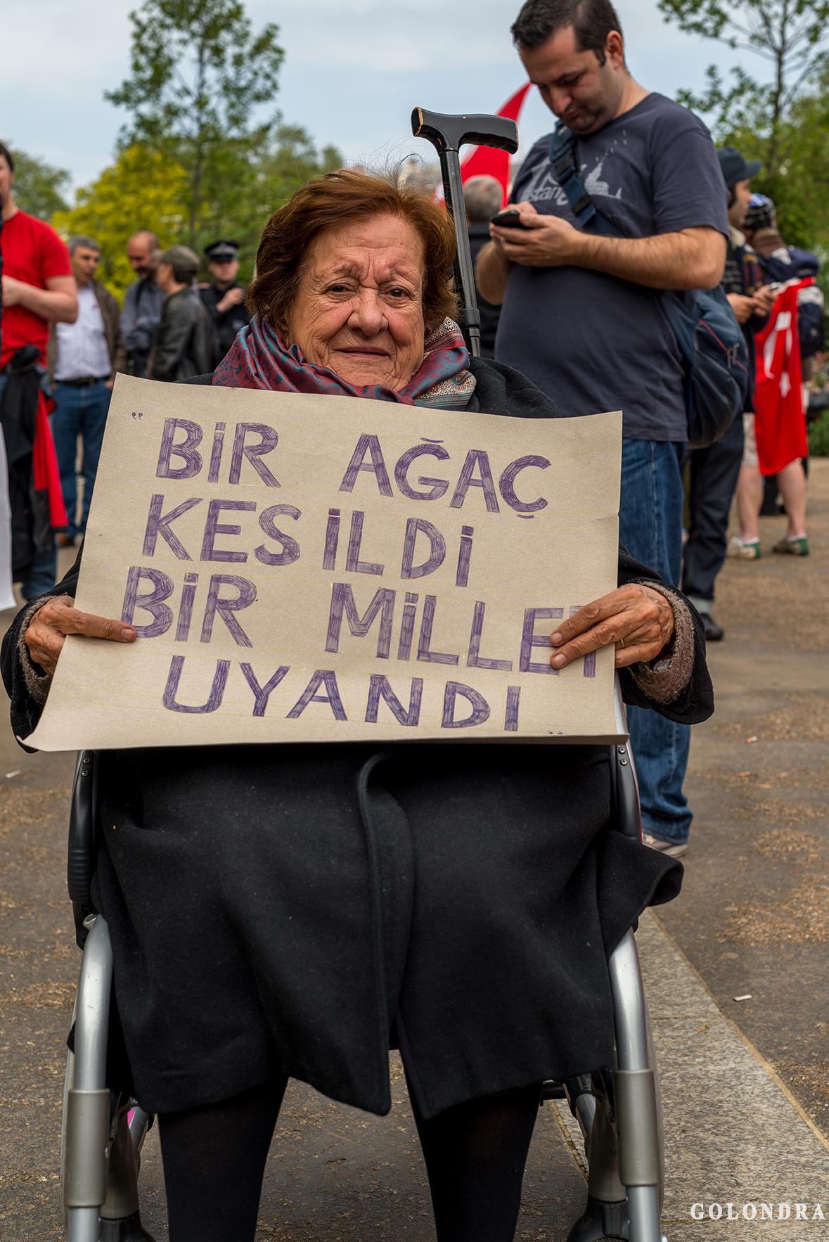 Protesting Turkish Government - Turk Hukumetini Protesto - Londra - London (18)